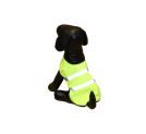 High Visibility Dog Items